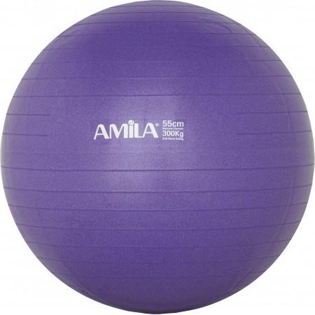 Μπάλα γυμναστικής Amila 95830